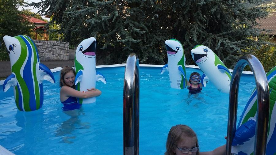 Cranpool Flipper Aktion